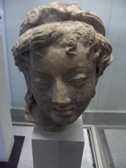Tête de jeune femme (Hadda, III-IVe s.)