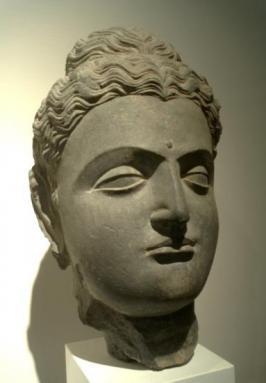 Tête de Bouddha (Gandhara, I-IIe s.)